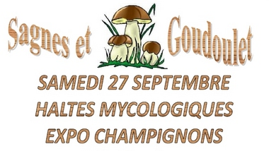 2014-09-27-haltes-expo-champignons.jpg