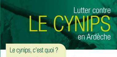 2014-10-21-cynips-pnr.jpg