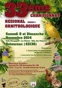 2014-11-08-championat-oiseaux.jpg