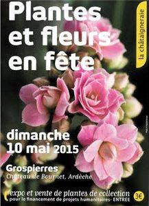 2015-05-10-fete-plantes-grospierres.jpg
