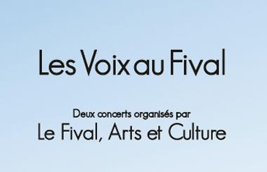 2015-07-31-concert-au-fival.jpg