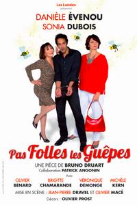 2015-11-08-theatre-le-puy.png