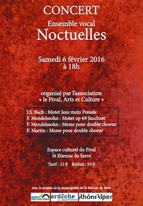 2016-02-06-concert-noctuelles-fival.jpg