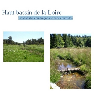2016-03-22-zones-humides-bassin-haute-loire.jpg