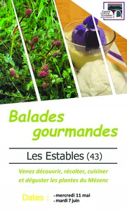 2016-05-11-balades-gourmandes-estables.jpg