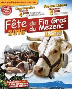 2016-06-04-fete-fin-gras-hl.jpg