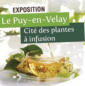 2016-08-15-21-exposition-plantes-infusion.jpg