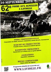 2016-09-10-foire-agnelles-laviolle.jpg