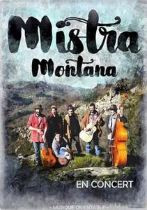 2016-11-19-concert-ardelaine-mistra-montana.jpg