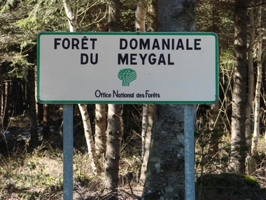 2017-01-06-questionnaire-foret-meygal.jpg