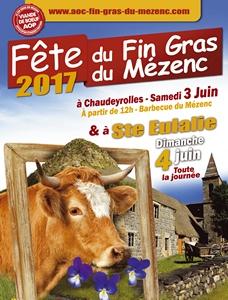2017-06-03-04-fete-fin-gras.jpg