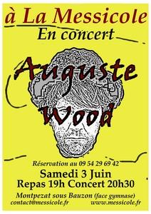 2017-06-03-concert-wood-messicole.jpg