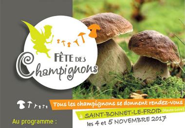 2017-11-05-fete-champignons-st-bonnet.jpg