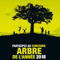 2018-03-10-concours-arbre-2018.png