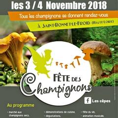 2018-11-04-05-fete-champignons-st-bonnet.jpg