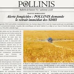 2018-11-17-bulletin-de-pollinis.jpg