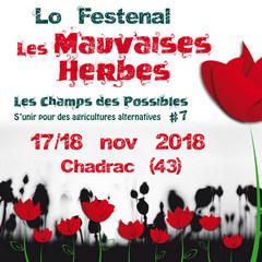 2018-11-17-festival-mauvaises-herbes.jpg