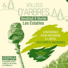 2019-02-08-conferences-veillees-arbres-parc.jpg