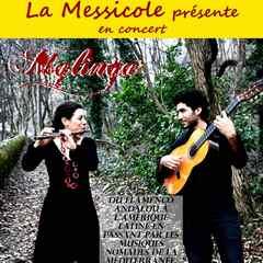 2019-06-15-concert-a-la-messicole.jpg