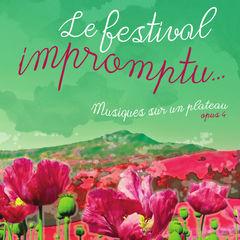 2019-07-02-festival-impromptu.jpg
