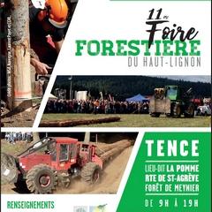 2019-09-22-foire-forestiere-tence.jpg