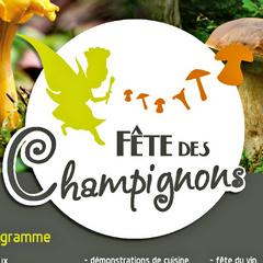 2019-11-02-fete-champignons-st-bonnet.jpg