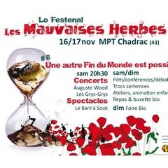 2019-11-16-17-festival-des-mauvaises-herbes.jpg