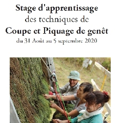2020-06-05-stage-genet-liger.jpg
