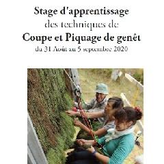 2020-06-30-stage-genets-liger.jpg