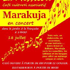 2020-07-18-concert-messicole.jpg