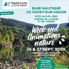 2020-09-26-27-animations-nature-43.jpg