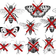 2021-03-11-informations-pollinis.jpg